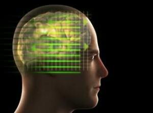 gambar-otak