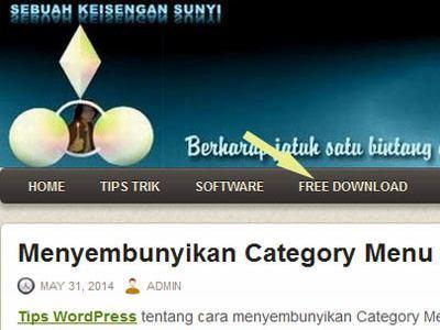 Menyembunyikan Kategori di Menu WP